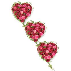 TRIPLE HEART COFFIN TRIBUTE